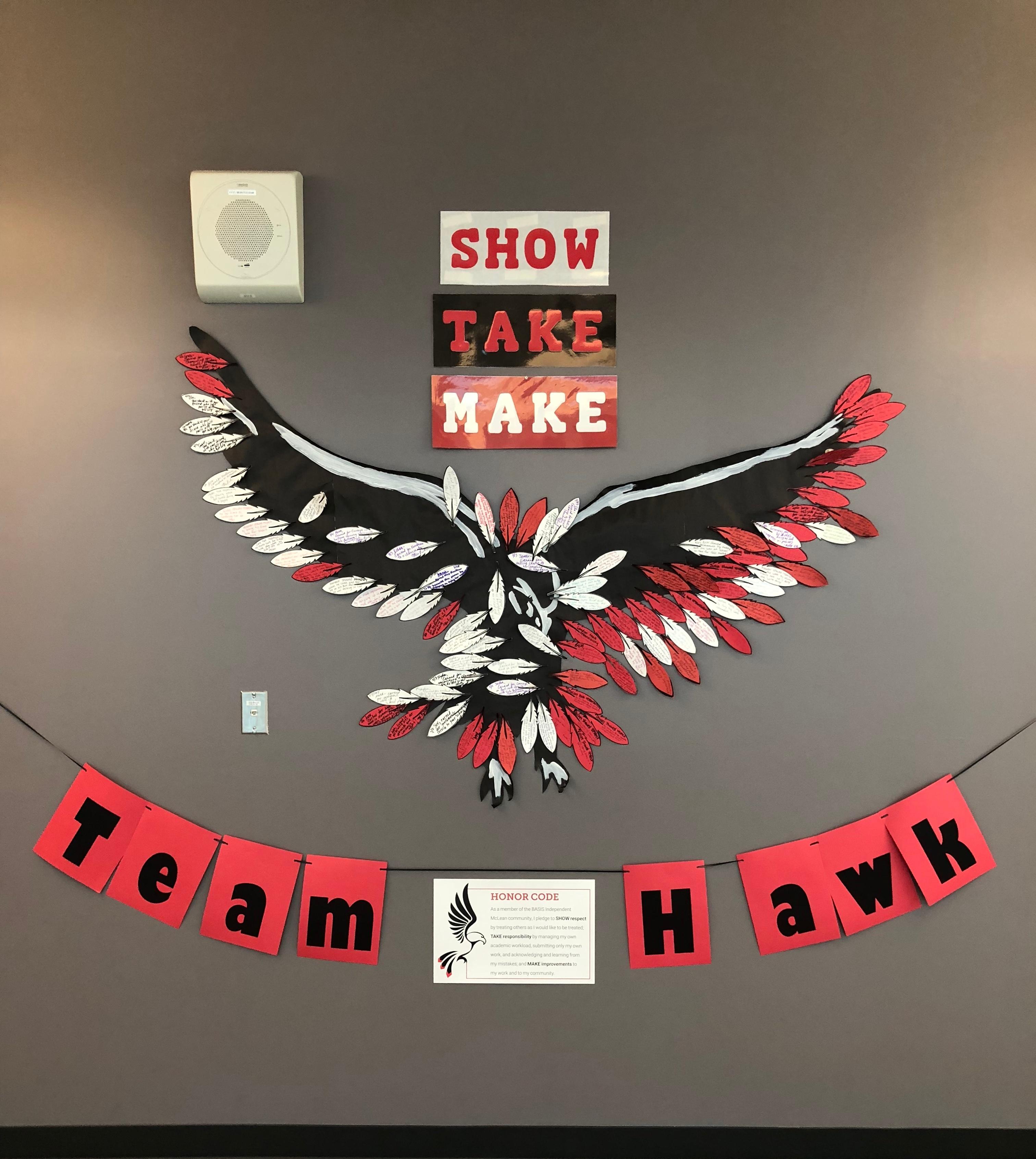 STMHawk.Primary.jpg